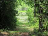 LOT 26 Pinewood Drive - Photo 3