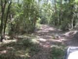 202 Acres Hwy 331 - Photo 13