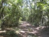 202 Acres Hwy 331 - Photo 14