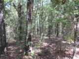 202 Acres Hwy 331 - Photo 15