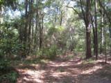 202 Acres Hwy 331 - Photo 16