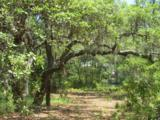 3.70 Acres Churchill Bayou - Photo 13