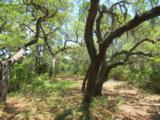 3.70 Acres Churchill Bayou - Photo 7