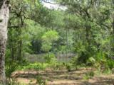 3.70 Acres Churchill Bayou - Photo 8