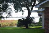 361 Pitts Bayshore Drive - Photo 4
