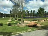 Lot 16 Sun Bear Circle - Photo 8