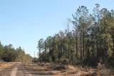 Lot 13 Forest Hills Drive - Photo 2