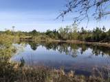 117 Firefly Trail - Photo 2