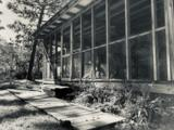 137 Shady Pines Drive - Photo 24