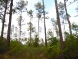 44 acres 4714 Co. Hwy 89 - Photo 10