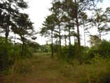 44 acres 4714 Co. Hwy 89 - Photo 12