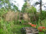 44 acres 4714 Co. Hwy 89 - Photo 26