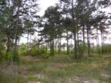 44 acres 4714 Co. Hwy 89 - Photo 28