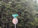 12 AC Broxson Road - Photo 4