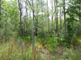 2 Lots Bayou Forrest Drive - Photo 3