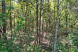 3925 Bear Creek Road - Photo 8