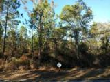 Lot 3 Sun Bear Circle - Photo 1