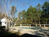 Lot 3 Sun Bear Circle - Photo 6
