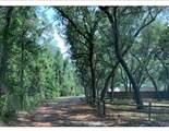 130 Lagrange Road - Photo 3