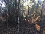 100 acres Black Creek Rd - Photo 4