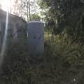 9.36 Acres Cr 481W - Photo 5