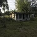 9.36 Acres Cr 481W - Photo 6