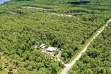 9.75 Acres N Co Hwy 393 - Photo 4
