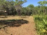 259 Leaning Pines Loop - Photo 3