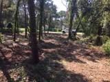 259 Leaning Pines Loop - Photo 4
