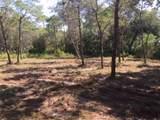 259 Leaning Pines Loop - Photo 5