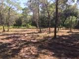 259 Leaning Pines Loop - Photo 6