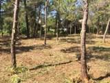 259 Leaning Pines Loop - Photo 7