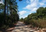 TBD Bear Head Rd - Photo 4