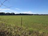 10 AC - D Griffith Mill Road - Photo 18