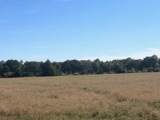 10 AC - D Griffith Mill Road - Photo 6