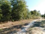 1.2 Acres Hwy 90 - Photo 7