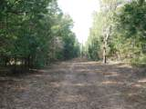 1.5AC Wilkerson Bluff Road - Photo 1