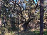 1501 Sharks Tooth Trail - Photo 21