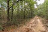 Lot 13 Country Living Road - Photo 6
