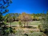 1601 Meadowlark Way - Photo 10
