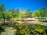 1601 Meadowlark Way - Photo 13