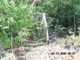 0000 Wolf Track Ridge - Photo 3