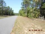 0000 Wolf Track Ridge - Photo 6