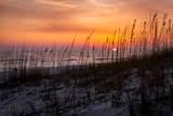 256 Emerald Beach Circle - Photo 49