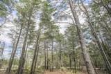 146 Pine Lands Loop - Photo 34