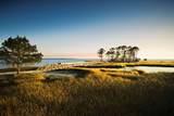 7605 Coastal Hammock Trail - Photo 2