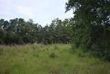 12.23 Acres On Hannah Branch Road - Photo 10