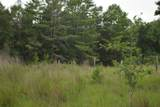 12.23 Acres On Hannah Branch Road - Photo 11