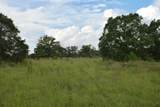12.23 Acres On Hannah Branch Road - Photo 18