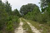 12.23 Acres On Hannah Branch Road - Photo 2